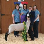 Grand Champion Lamb - Dillon Anders; Buyer - Spring Stampede