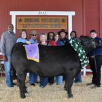 Grand Champion Steer - Bryce Cross; Buyer - Spring Stampede