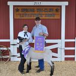 Grand Champion Lamb - Morgan Steinecke; Buyer - Spring Carpets