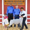 Reserve Champion Lamb - Leecia White; Buyer - Spring Stampede