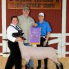 Grand Champion Lamb - Aislynn Schouten; Buyer - Spring Carpets